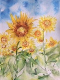 Aquarell_Sonnenblumen