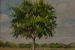 Baum_Aquarell
