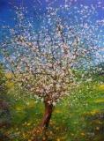 Bluehender-Apfelbaum
