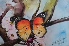 Postkarte_Schmetterling_im_Fruehling